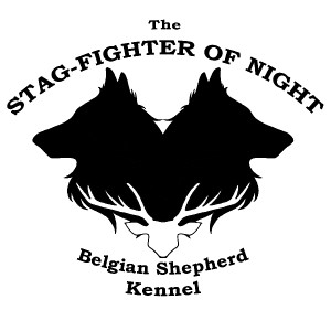 stagfighter_logo.jpg